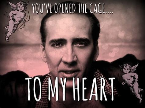 Nic Cage Memes - nicolas cage irony is a poor master