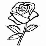 Coloring Rose Pages Roses Colouring Sheets Sheet Cartoon Hearts Adults sketch template
