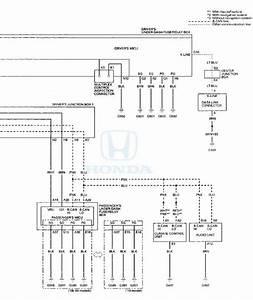 Honda Accord  Circuit Diagram