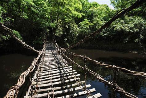 idees deco chambre adulte trek a bali poster pont en bois et liane suspendu