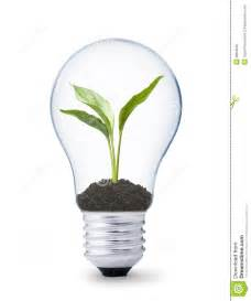 Light Bulbs For Plants by Plant Growing Inside A Lightbulb Stock Photo Image 9804040