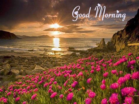 Good Morning HD Wallpapers - Wallpaper Cave
