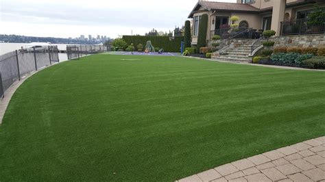 Synthetic Turfs & Lawns In