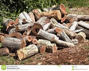 Wood Pile stock image Image of firewood, lumber, wood