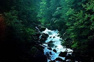 Nature Landscapes Tumblr images