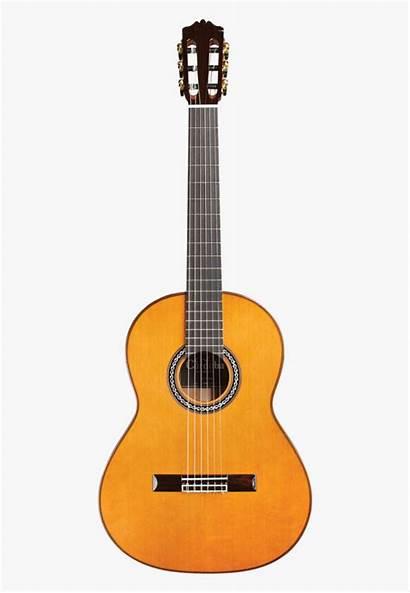 Guitar Transparent Clipart Acoustic Background Classical Cartoon
