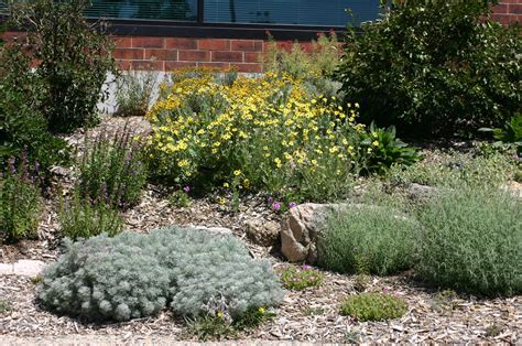 xeriscape gardening colorado springs utilities xeriscape demonstration garden colorado springs plant select