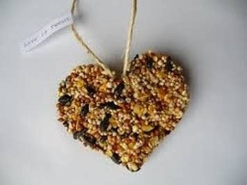 homemade bird seed ornaments    homemade bird food