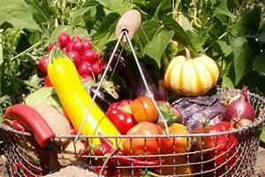 Gemüse Anbauen Plan : gem sesorten f r den freizeitg rtner ~ Watch28wear.com Haus und Dekorationen