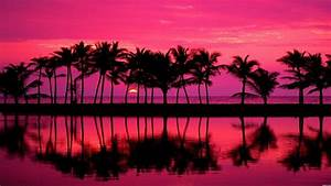 Pink, Wallpapers, Hd, -, Pink, Sunset