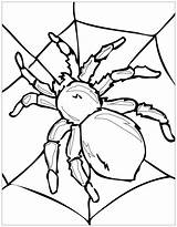 Coloring Insects Pages Children sketch template