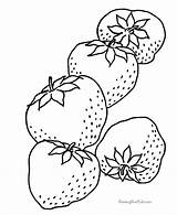 Strawberry Coloring Pages Fresh Strawberries Sheet Pattern sketch template