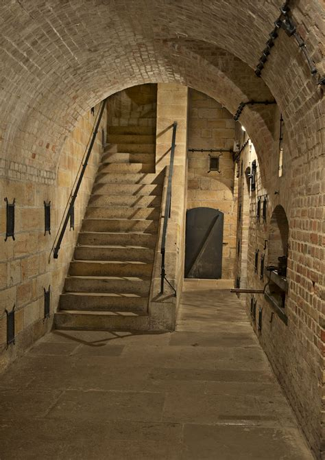 guided tours  fortress koenigstein