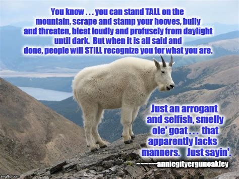 Billy Goat Meme - billy goat meme 28 images goat memes billy goat meme 28 images billy goat meme 1 blank