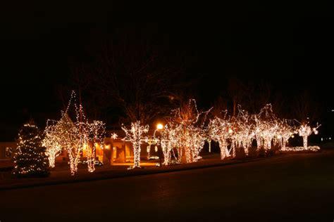 christmas tree lighting installed portfolio the lighting master
