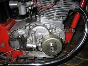 Powerdynamo For Mv Agusta 350  1974  With Dansi Magneto