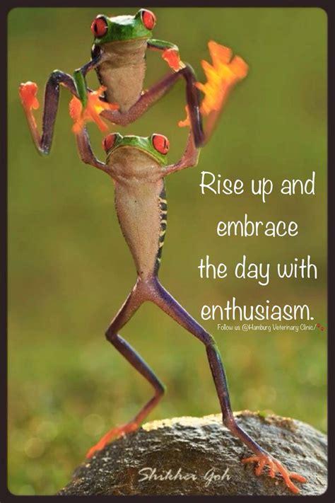 rise  shine wake  morning  day greet
