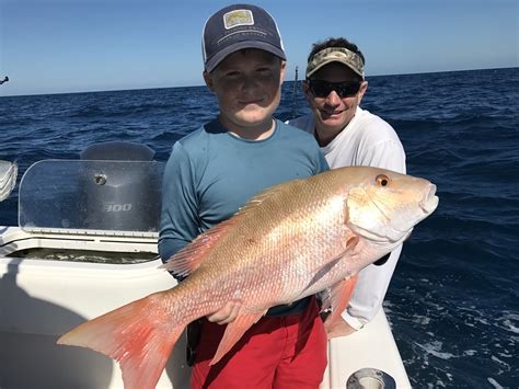 oscar grouper florida snapper delphfishing delph fishing