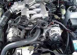 4 3l V6 Engine Diagram  Engine  Wiring Diagram Images