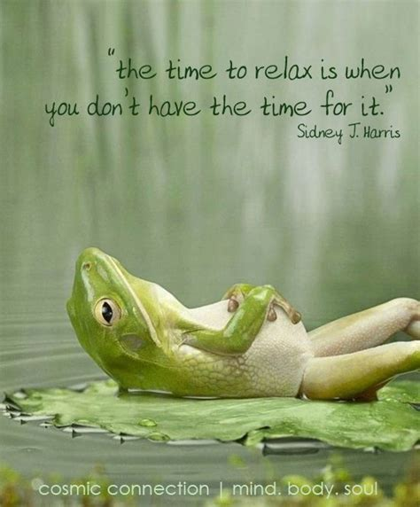 relaxation quotes funny