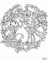 Raccoon Coloring Printable Raccoons Animal Adult Sheets Inspiration Supercoloring Drawing Under Forest Creative Birijus Animals Chester Categories sketch template