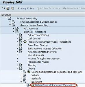 Chart Of Accounts In Sap How To Create Financial Statement Version Fsv In Sap