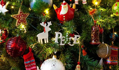 top  facts  christmas trees expresscouk