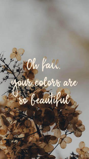 Free download collection of aesthetic wallpapers for your desktop and mobile. Fall Aesthetic Wallpapers for Mobile and Desktop ...
