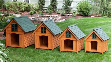 beautiful great dane dog house plans  home plans design