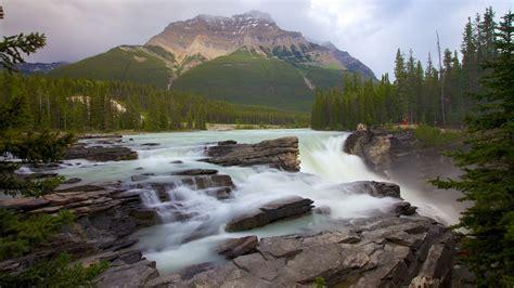 Athabasca Falls In Jasper Alberta Expedia