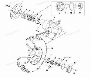 Polaris Sportsman 500 Clutch Diagram  Polaris  Free Engine