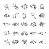 Sea Tattoo Ocean Tattoos Drawings Drawing Jellyfish Outlines Marine Creatures Shark Animal Outline Doodle Creature Coloring Animals Ideen Icons Zeichnen sketch template