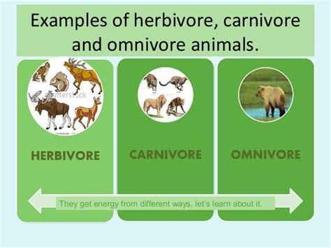 Herbivorecarnivoreandomnivoreanimals 131127045245phpapp01