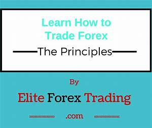 Free Forex Trading Guide  Great For Beginners  Pdf