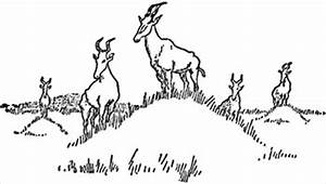 Free kongoni-lookout-of-the-plains Clipart - Free Clipart ...