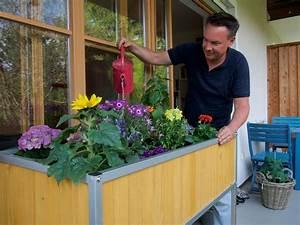 Hochbeet Für Balkon Selber Bauen : hochbeet f r den balkon selber bauen anleitung und tipps ~ Eleganceandgraceweddings.com Haus und Dekorationen