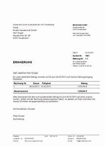 Rechnung Per Email Gültig : muster zahlungserinnerung erstellt mit dem programm hth ~ Themetempest.com Abrechnung