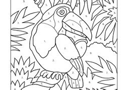color  number coloring pages printables