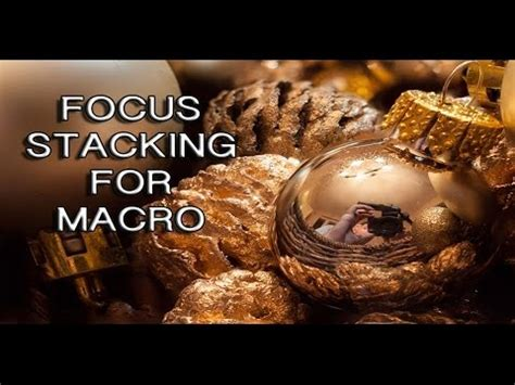 focus stacking macro photography tutorial youtube