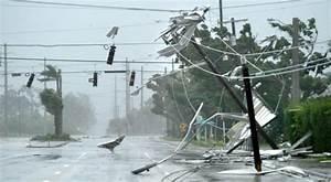 Florida Hurricanes And Hurricane Survival Guide