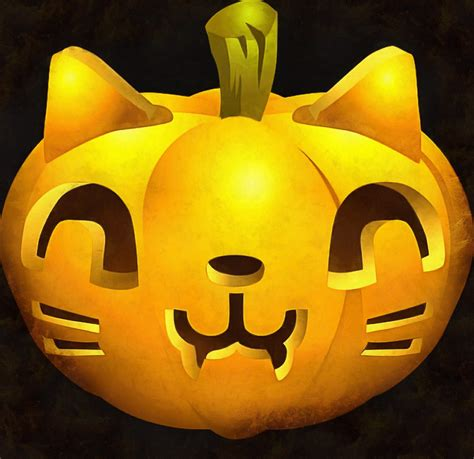 cat pumpkin pumpkin picture halloween holiday
