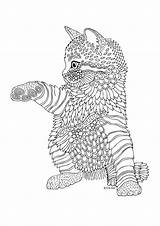 Coloring Pages Cat Kitten Animal Mandala Rocks Adult Printable Colouring Kittens Books sketch template