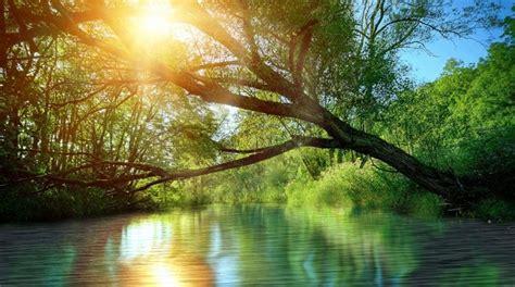 In Der Natur by Animierte Landschaften Entspannung F 252 R Android