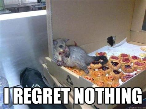 Possum Memes - i regret nothing 10 possum quickmeme