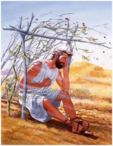 Jonah And The Vine