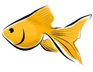 Gold Fish Clip Art Clipartsco