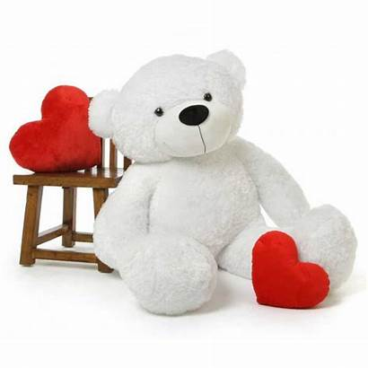 Teddy Bear Toy Bears Personalized India Soft