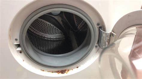 waschmaschine reinigen mit zitronensaeure  grad