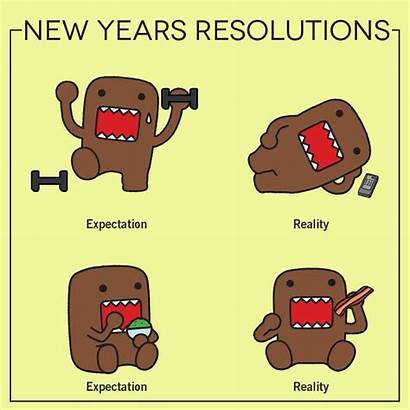 Funny Resolutions Resolution Cartoon Memes Quotes Domo