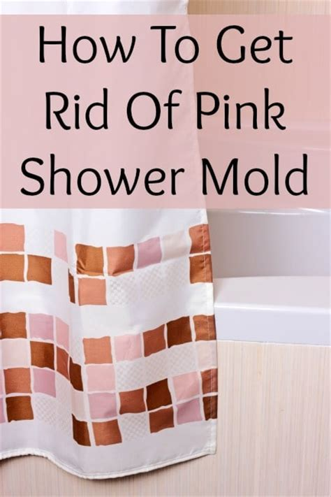 pink shower mold what is it how do i get rid of it